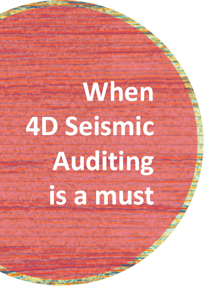 4D auditing